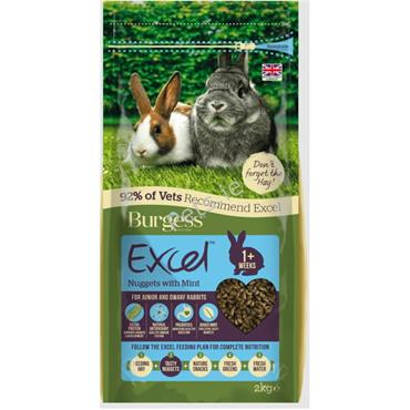 Excel Nuggets - Junior & Dwarf Rabbit