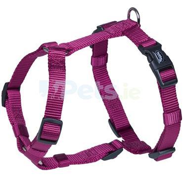 Classic - Harness - Raspberry