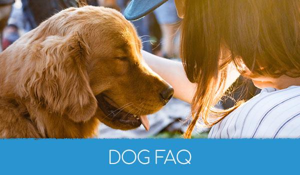 Dog FAQ