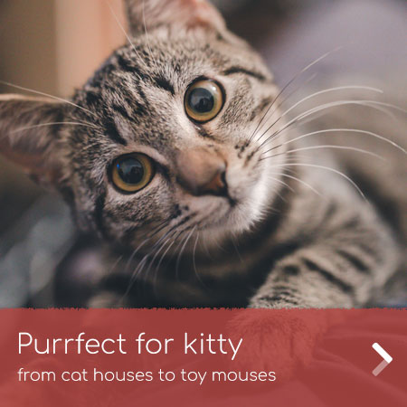 Cat houses to toy mouses