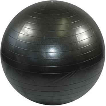 Bodymax Anti-Burst Gym Balls