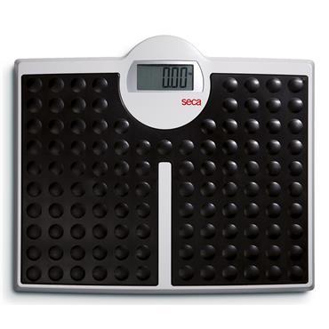 Seca 813 High Capacity Digital Flat Scales