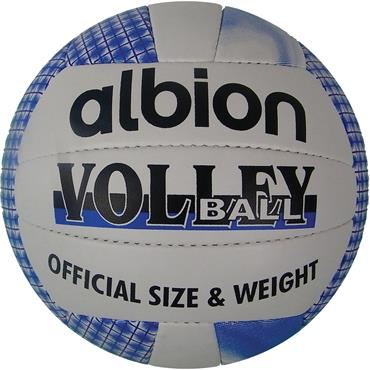 Albion Volleyball