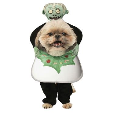 Head on a Platter Pet Costume