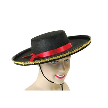 Spanish Felt Hat