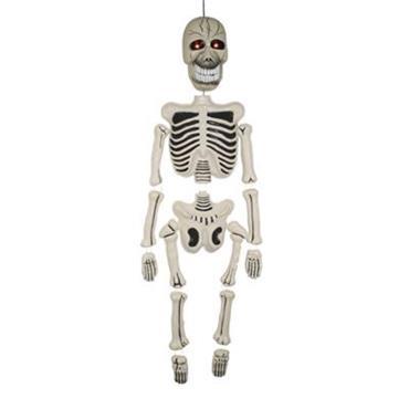 Skeleton 150cm