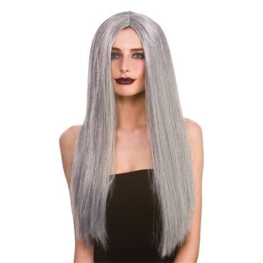 Classic Long Dark Grey Wig