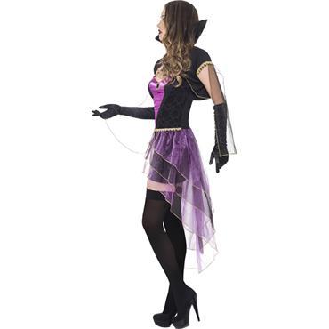 Fever Mirror Mistress Costume