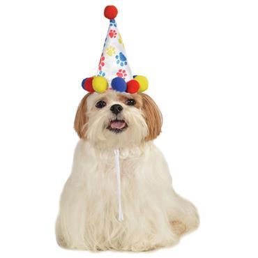 Boy Paw Print Birthday Pet Hat