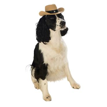 Brown Cowboy Hat Dog