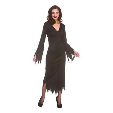 Gothic Dress Costume
