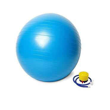 Vector X Swiss Gym Ball 65cm - One