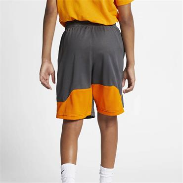 Nike Boys Dri-Fit Shorts - Grey/Orange